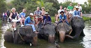 Hua Hin Elephant Village